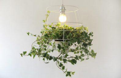 Die Photosynthese Lampe von Meirav Barzilay