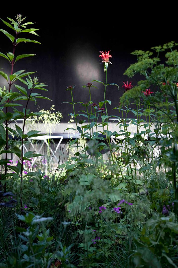 06-Peter-Zumthor-Serpentine-Gallery-Pavilion-2011