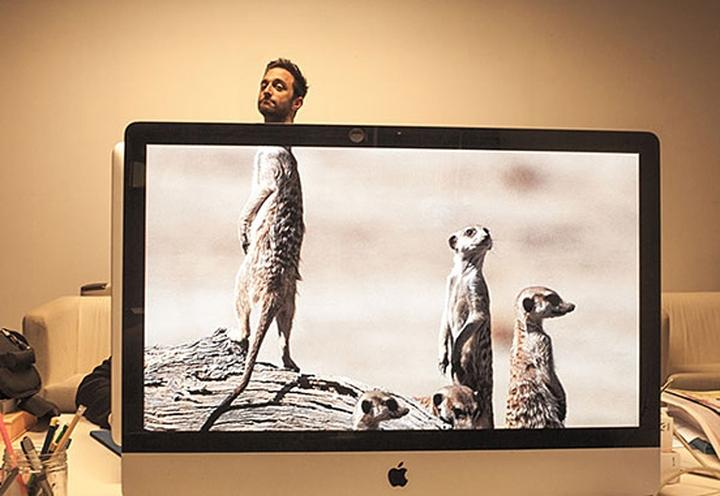 animals office social design magazine 01
