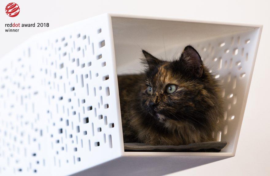 TUNNEL cat